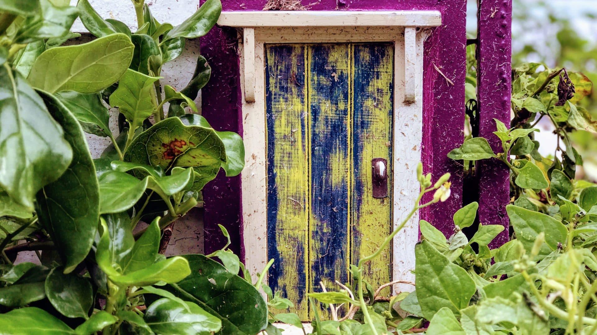 Doorways to Wellington\u0027s World of Fairies.