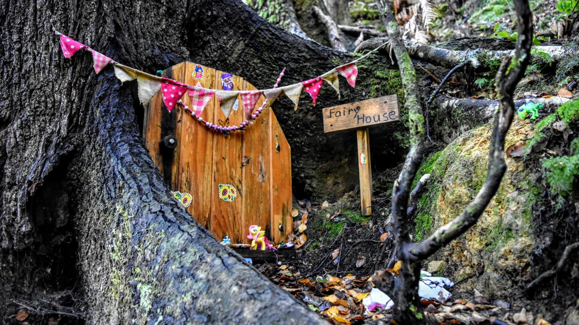 Doorways to Wellington's World of Fairies  | #WhyWellington?